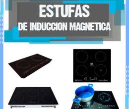 Estufa parrilla de inducción – Estas son las mejores estufas parrillas de inducción magnética.